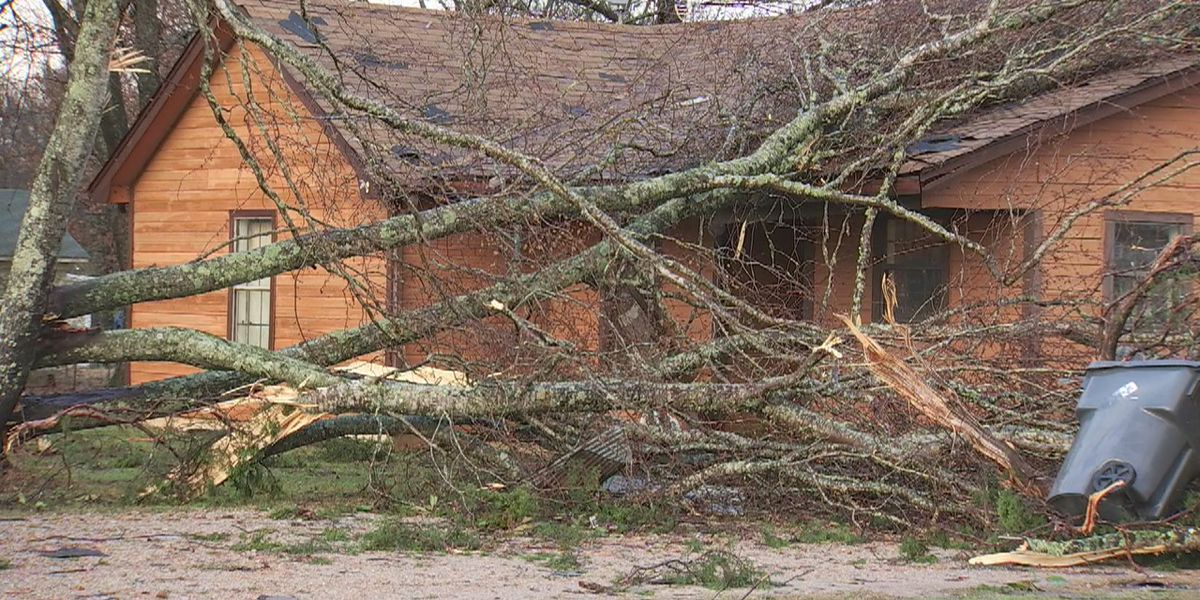 NWS confirms two tornadoes in Mid South Saturday morning