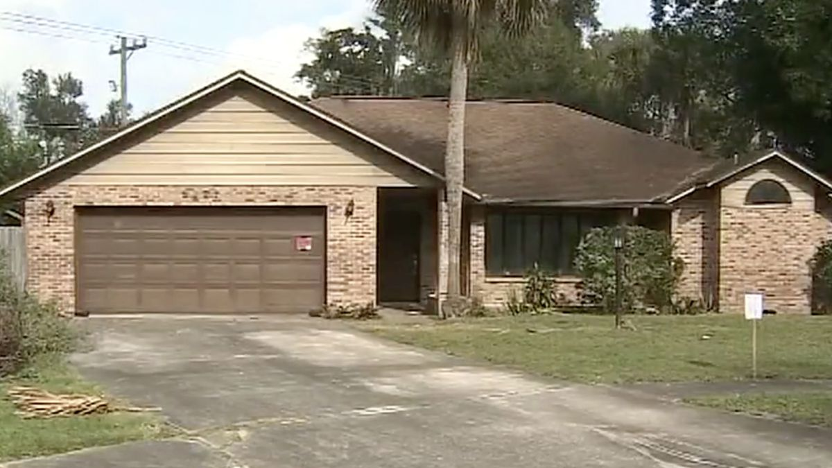 'It's been a horror story': Rats spilling from home into Florida neighborhood, residents say