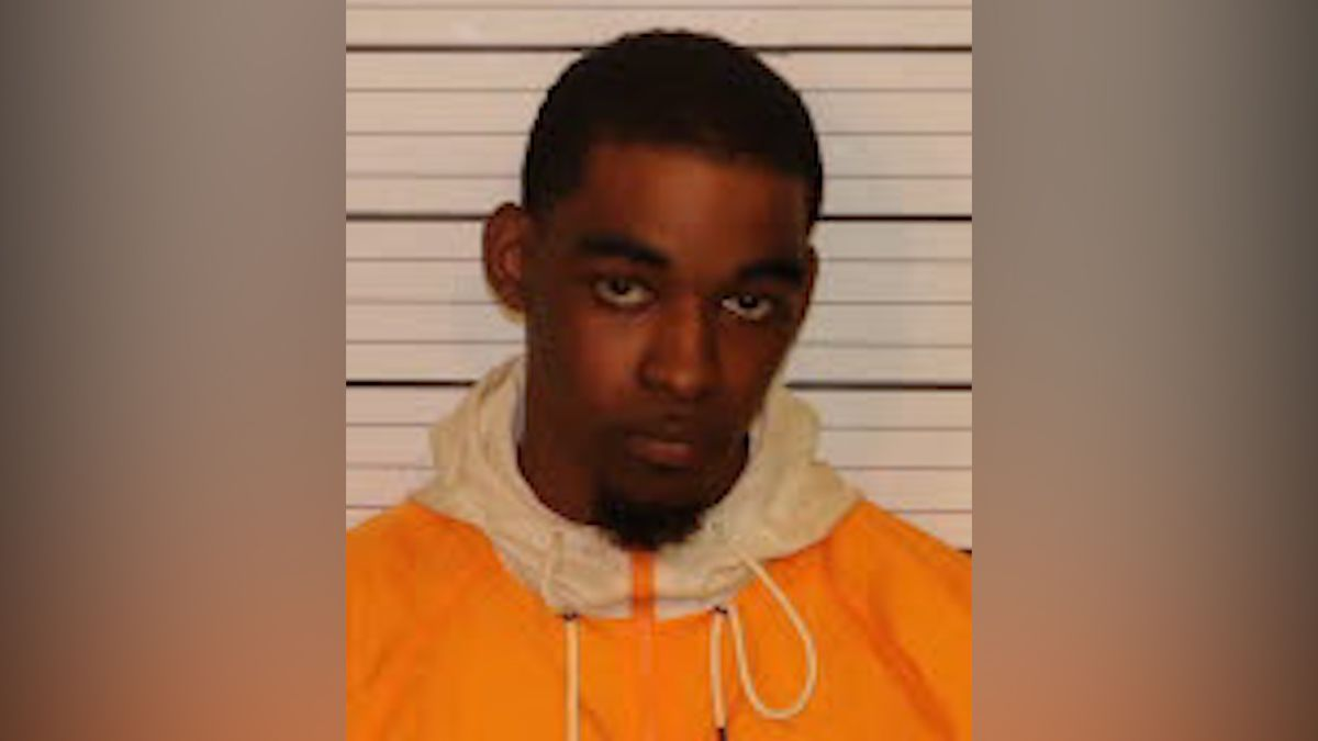 Shots fired suspect runs onto interstate while fleeing from police, court records say