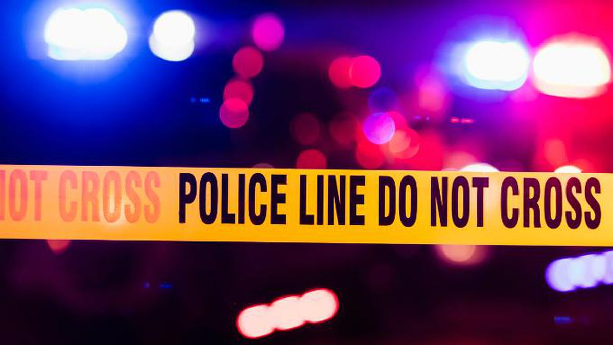 Woman fighting for her life after being stabbed, police say