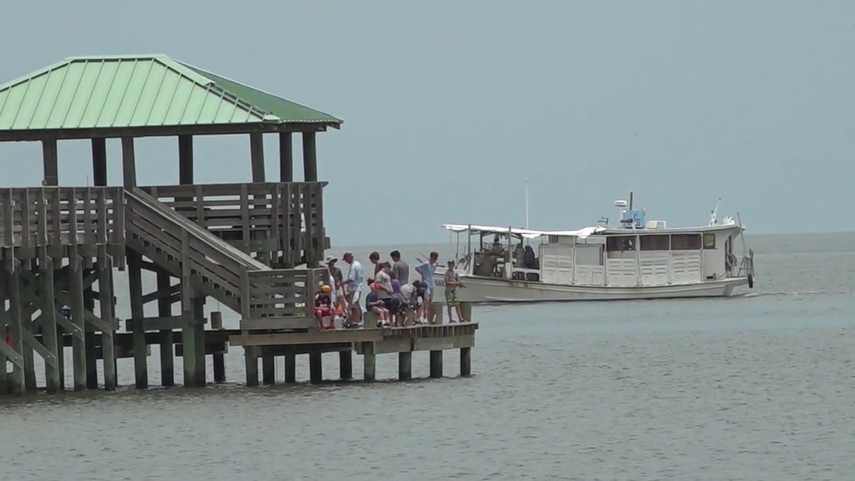 Beaches along the Mississippi gulf coast closed after toxic bacteria found in water