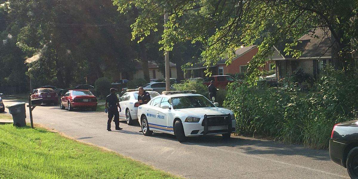 Police: Child, 5, accidentally shot in Whitehaven